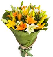 6549 - Mixed Lilium Bouquet