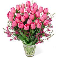 9926 - Pink Tulips