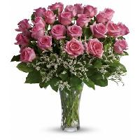 4890 - 24 Pink Roses