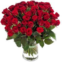 3675 - 50 Red Roses