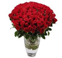 5980 - 100 Rose Bouquet