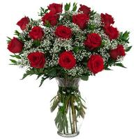 3595 - 15 Red Roses