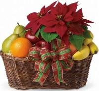 5308 - Poinsettia and Fruit
