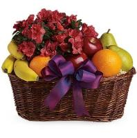 5309 - Azalea Fruit Basket