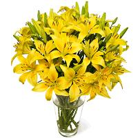3332 - Yellow Liliums