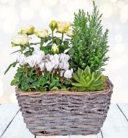 3577 - White Christmas Basket