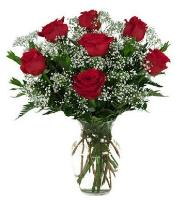 3663 - 7 Red Roses