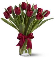 3434 - 10 Red Tulips