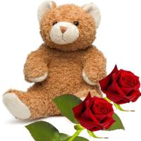 5997 - Teddy Bear with Roses