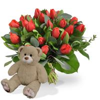 5558 - Tulips with Teddy Bear