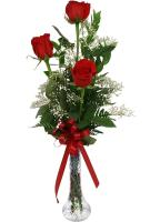 3684 - 3 Red Roses