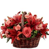 6554 - Ruby Basket